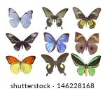 butterfly on white | Shutterstock . vector #146228168