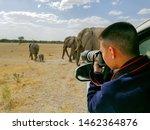 Tourist photographer on safari in Namibia - stock photo