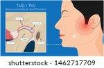 Temporomandibular Joint...