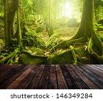 Wooden Platform And Green...