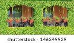 Balcony Overgrown With Vine...