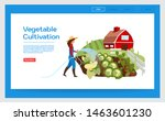 vegetable cultivation landing...