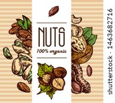 nuts set sketch style food... | Shutterstock .eps vector #1463682716
