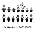 black,black and white,bloom,blooming,blossom,botanic,botanical,botany,ceramic,collection,cultivated,eps10,flora,floral,flower