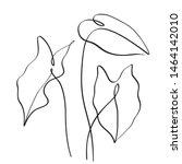 leaves of nephthytis or green... | Shutterstock .eps vector #1464142010
