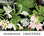 tropical plants and flowers and ... | Shutterstock .eps vector #1464153563
