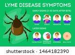 lyme disease symptoms. danger... | Shutterstock .eps vector #1464182390