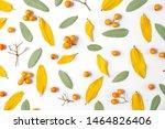 autumn creative composition.... | Shutterstock . vector #1464826406