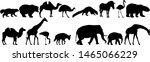 silhouette elephant bear eagle... | Shutterstock .eps vector #1465066229