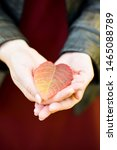Autumn Leaf In Hand Of Girl....