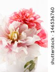 summer flowers | Shutterstock . vector #146536760