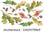 Watercolor Autumn Leaves On A...