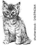 sitting kitten   Shutterstock .eps vector #146596364