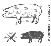 american  us  cuts of pork | Shutterstock .eps vector #146606726