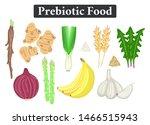 set of prebiotic food.... | Shutterstock .eps vector #1466515943