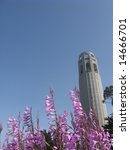coit tower on telegraph hill in ... | Shutterstock . vector #14666701
