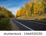 Highway  Road And Autumn Trees...