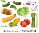 cucumbers  coriander seeds ... | Shutterstock .eps vector #1466964230