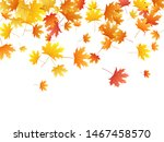 Maple Leaves Vector Background...