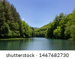 Stock photo beautiful panoramic view of big lake in the middle of the forest 1467682730