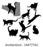 cat    kitten silhouettes   Shutterstock . vector #14677762