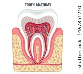 vector medical icon dental... | Shutterstock . vector #1467851210