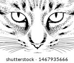 vector cat  cat's eyes  black... | Shutterstock .eps vector #1467935666