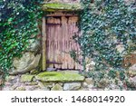 Old Wooden Door With Some Gree...