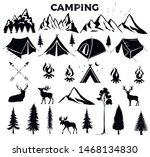Travel Event. Camping Vector...