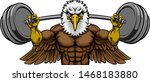 An Eagle Animal Body Builder...