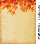 old paper with autumn leaves | Shutterstock . vector #146829659