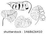 outline tropical leaves... | Shutterstock . vector #1468626410