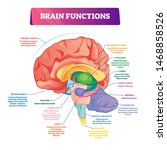 Brain Functions Vector...