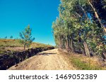 Landscape With Country Road...