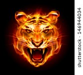 Head of a tiger in tongues of flame. Illustration on black - stock vector