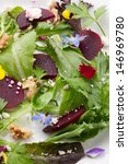 Beets with walnuts, goat cheese, and baby greens organic salad.  - stock photo