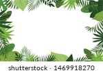 Fresh Rainforest Concept Banne...