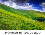 bush on the green meadows sloping mountains under the blue sky with stormy clouds - stock photo