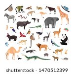 collection of exotic wild... | Shutterstock . vector #1470512399