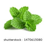 Fresh Mint Isolated On White...