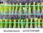 group of lavender flower before ...   Shutterstock . vector #1470739589