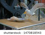 Seagull Stealing A Chip From An ...