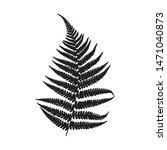 vector silhouette of fern leaf. ... | Shutterstock .eps vector #1471040873