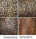 wild animal pattern collage | Shutterstock . vector #147142574