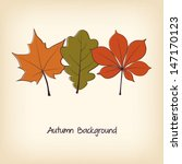 thanksgiving background with... | Shutterstock .eps vector #147170123