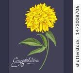 Chrysanthemum And Rudbeckia On...