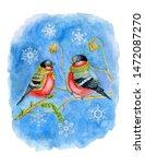 Winter Bullfinches In...