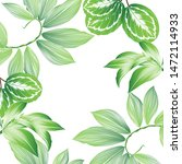 tropical summer pattern and... | Shutterstock .eps vector #1472114933