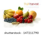 a fresh harvest of various... | Shutterstock . vector #147211790