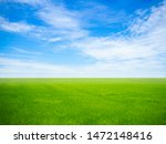 Empty Green Grass Field With...